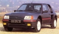 PEUGEOT 205 turbo 16 concurrente la ROVER 220 Turbo